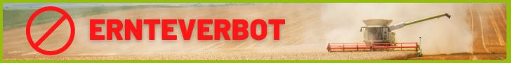 Ernteverbot: Mähdrescher auf Weizenfeld