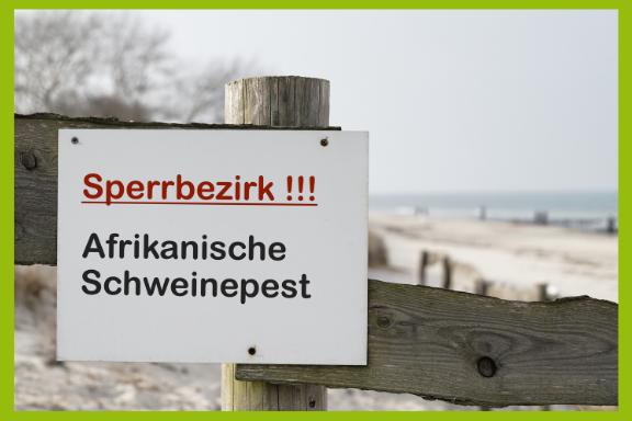 Schild Sperrbezirk! ASP