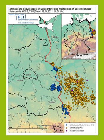 ASP in Deutschland - Karte vom FLI